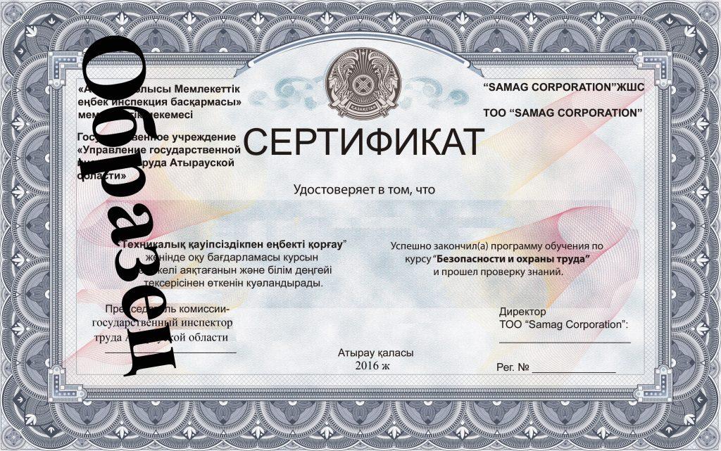 Финальный Сертификат1
